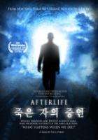 죽은 자의 증언(2011)